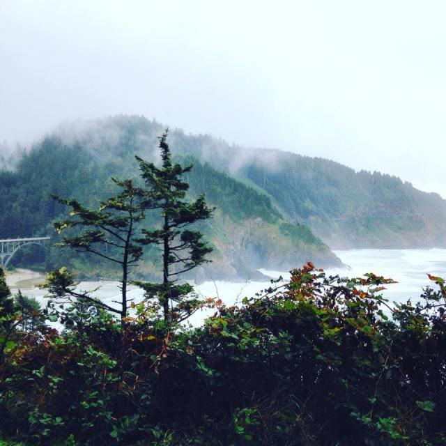 Coast with Bridge