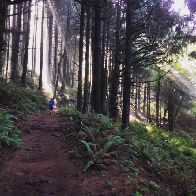 Sunlight and Trail Atch